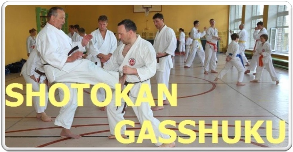 gasshuku banner 2016